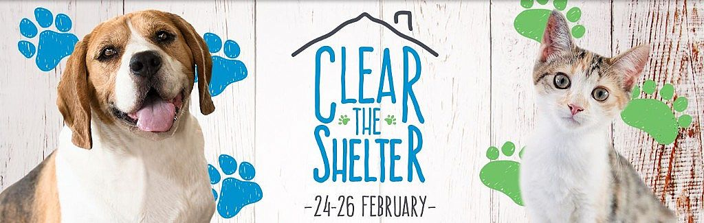 RSPCA NSW Clear The Shelter Weekend