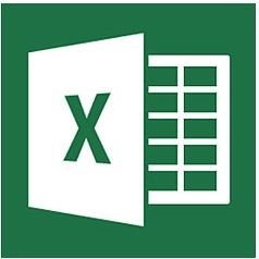 MS Office Group Courses